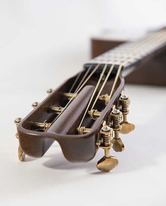 blackbird guitars detail