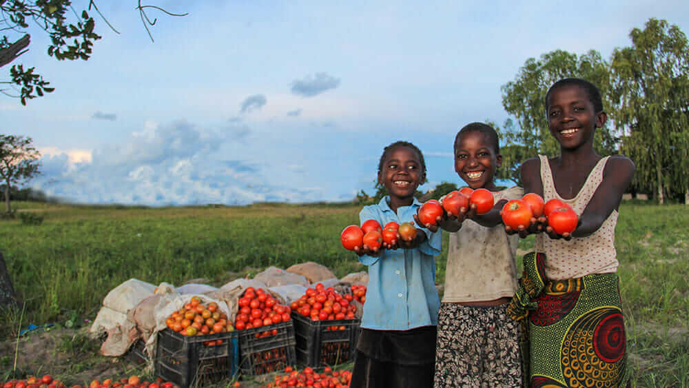 KickStart International kids tomatoes