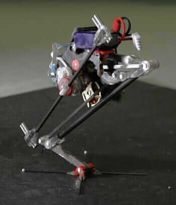 jumping robot salto in action
