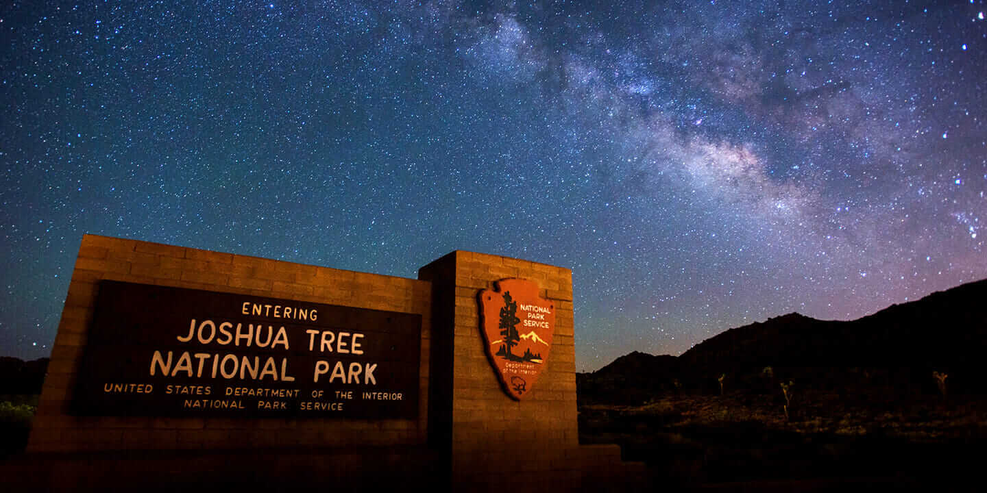 A view of the starry night sky above Joshua Tree National Park.