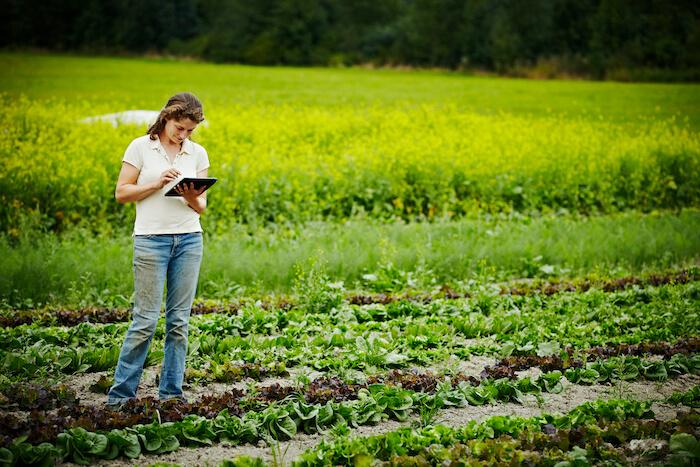 5g in rural areas farm