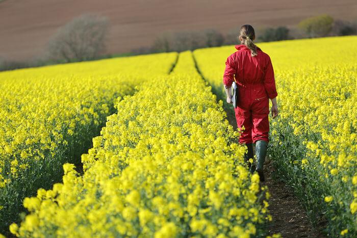 5g in rural areas person walking through farm