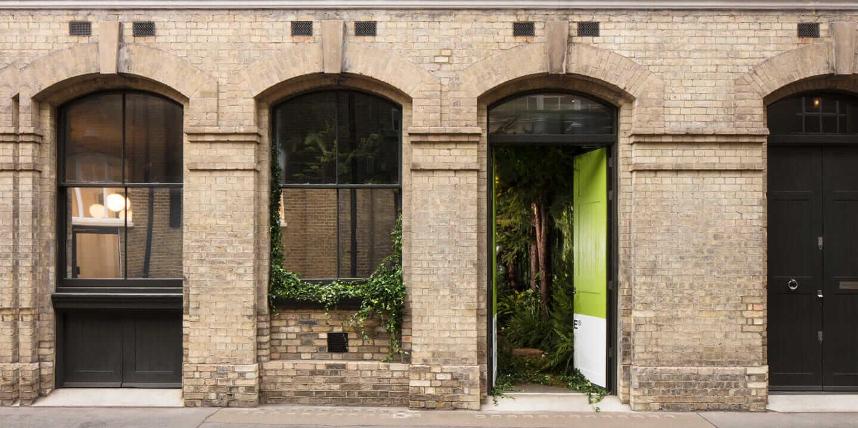 Grün macht glücklich: Biophile Architektur bringt die Natur ins ...
