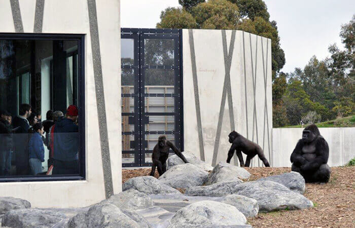 Sustainable urban planning Orana Wildlife Park's Great Ape Centre Christchurch