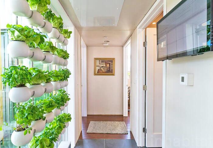 """Der """"Eco-Curtain"""" von CREO wurde als Hydrokulturgarten im Rahmen des Projekts """"reACT House"""" an der University of Maryland installiert und beim Solar Decathlon der Universität mit einem Innovationspreis ausgezeichnet. Mit freundlicher Genehmigung von CREO."""