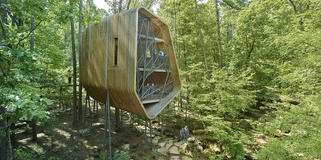 Das Evans Tree House ist fest mit der umliegenden Waldfläche verwachsen. Mit freundlicher Genehmigung von Modus Studio.