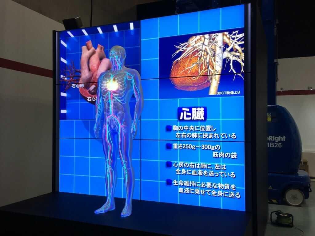 人体模型 内臓 プロジェクション マッピング