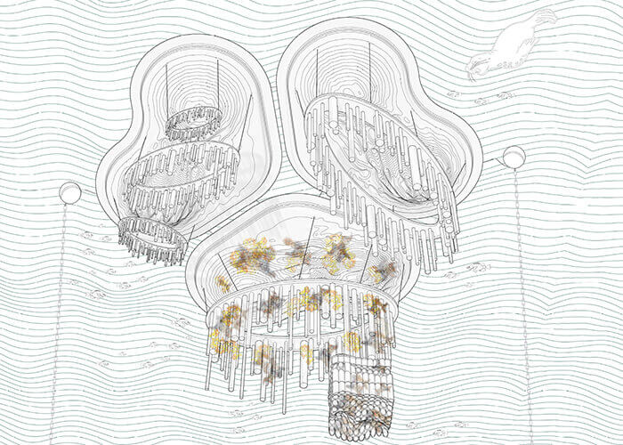 marine habitat float lab rendering of a cluster