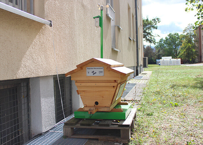 Hightech Bienenstock